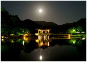 奈良公園 浮見堂(9月中秋の名月)