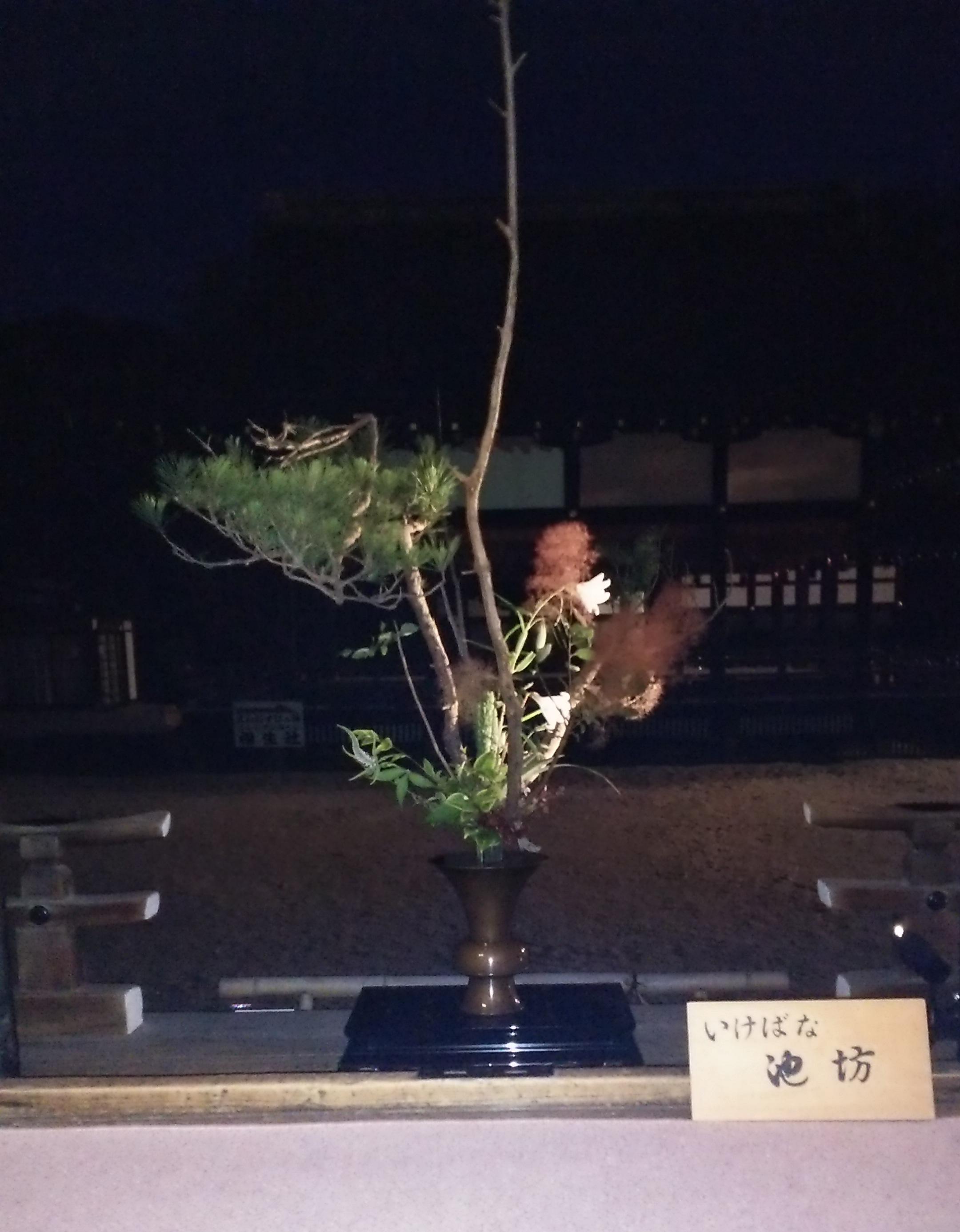 井浦新 下鴨神社写真展「御生Miare」