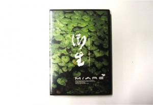 18_dvd
